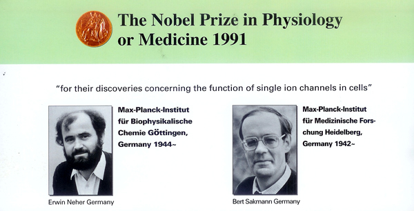 Negative Ions and the Nobel Prize